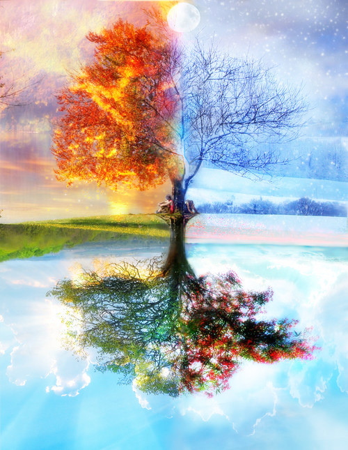 4-saisons.jpg